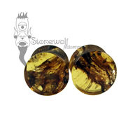 Pair of Chiapas Amber Plugs Double Flared Made to Order